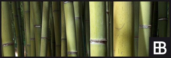 bambusdielen f r balkon und terrasse bauportal edle baustoffe bauforum. Black Bedroom Furniture Sets. Home Design Ideas