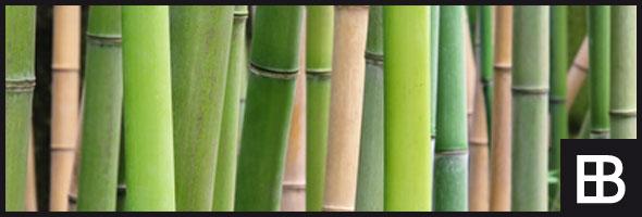 bambusm bel bauportal edle baustoffe. Black Bedroom Furniture Sets. Home Design Ideas